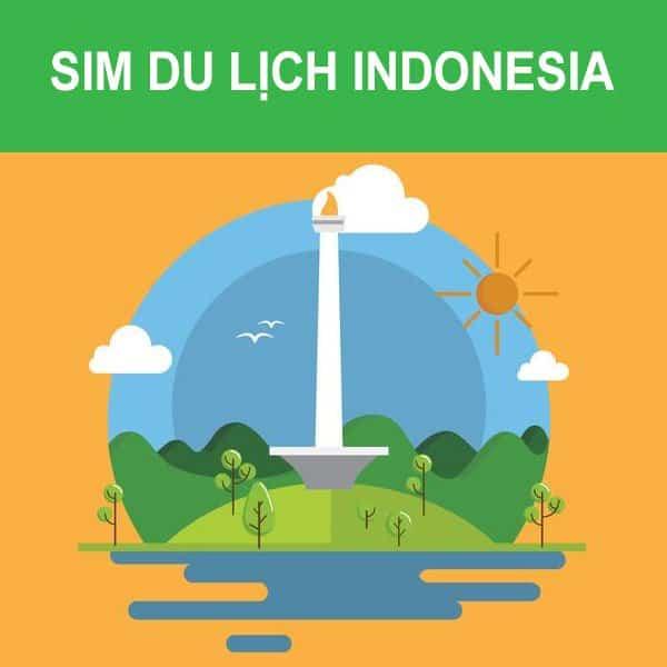 Sim indonesia tại việt nam