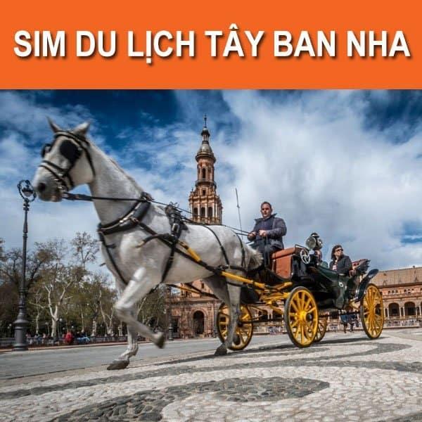 Mua sim Tây Ban Nha tại Việt Nam